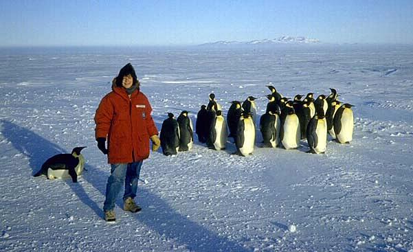 Susan-NOAA-Image.jpg