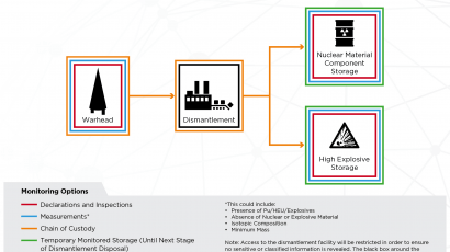 Monitoring options for dismantled nuclear warheads